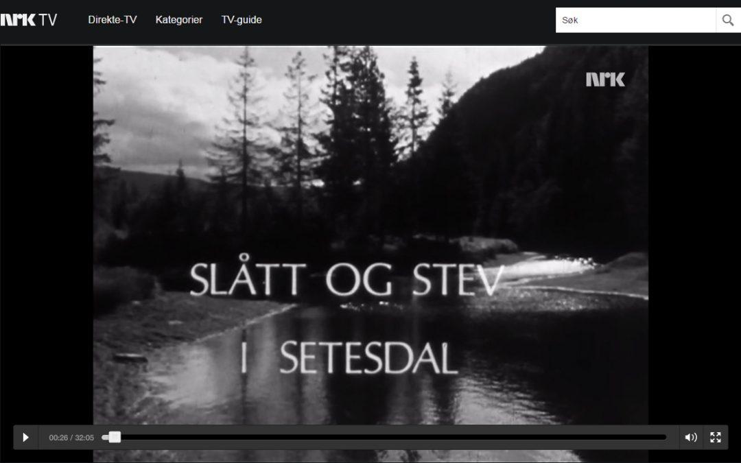 Slått og stev i Setesdal